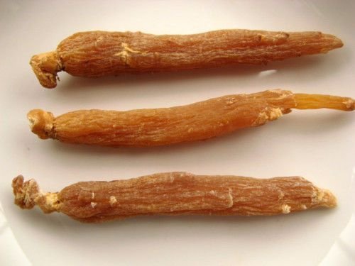 What is asian ginseng root