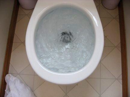 toilet bowl Japan liaison voyeur